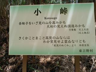 KC3Y0027.jpg