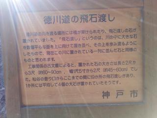 KC3Y0127.jpg